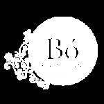 logo-bo1